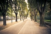 Riding a bicycle in Milan city. The photo has been taken during